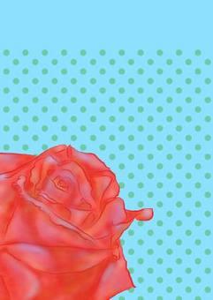 玫瑰卡紅色