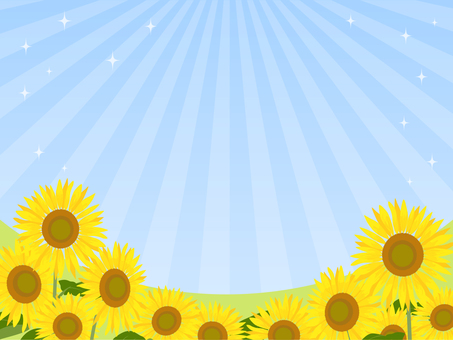 Sunflower field background · wallpaper