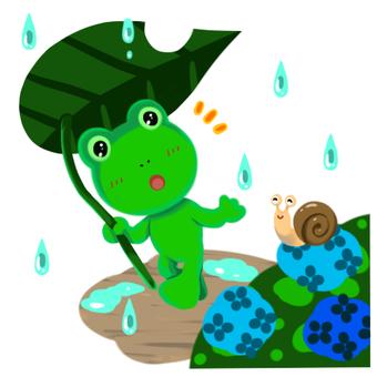 Rainy season of frog
