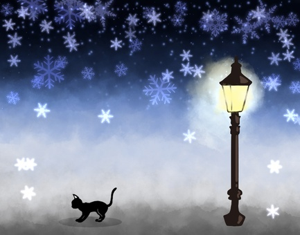 Cats and winter street lights