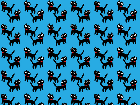 검은 고양이가 가득!