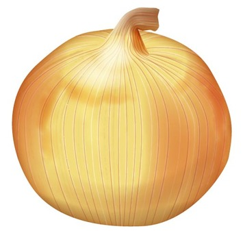 Onion 2 / Vegetable