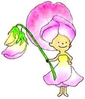 Sweet pea fairy