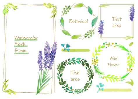 草藥植物框架