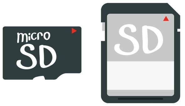 SD card and microSD card