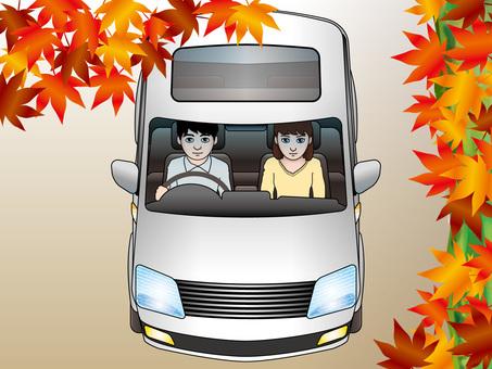 Drive (12) Minivan and autumn leaves