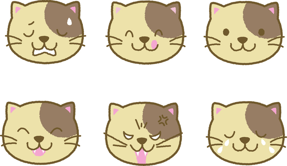 Expression cats