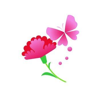 Carnation and butterflies