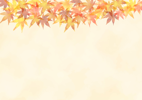 Autumn leaves background 1