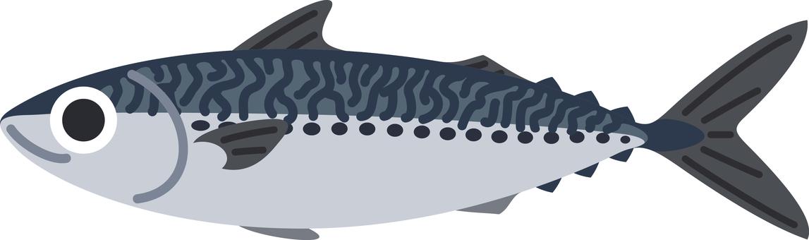 Mackerel Fish Fish and shellfish
