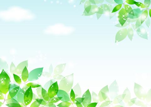 Fresh green material 49