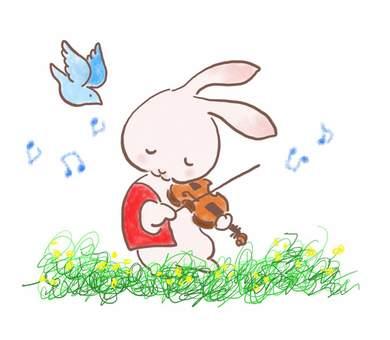 バイオリンうさぎ28
