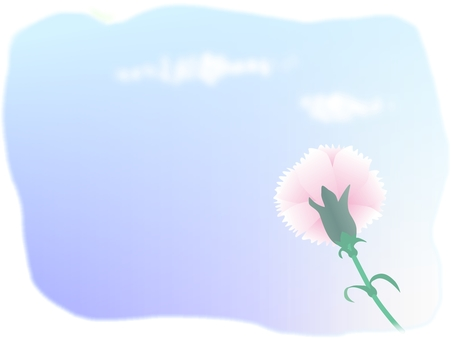 Carnation and sky