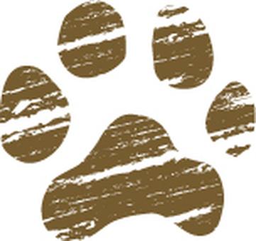 Dog footwear