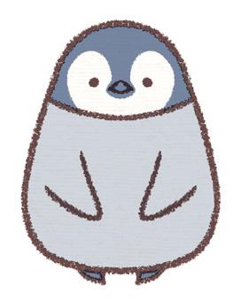 Penguin penguin chick