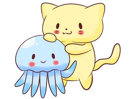 Cat and jellyfish