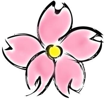 Illustration (Sakura)
