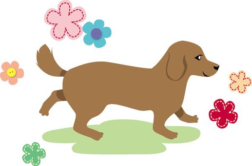 Dog (Dachshund · flower design)