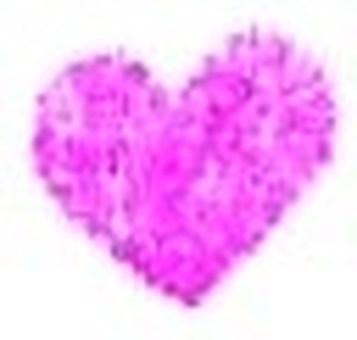 Hato * Pink