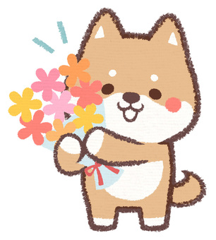 Have a flower dog