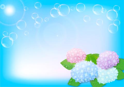 Hydrangea background
