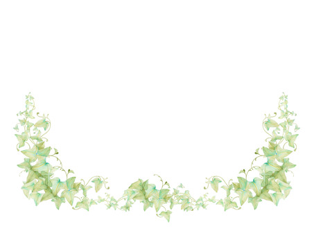 Ivy Both Edge Decoration ★ 0011-A