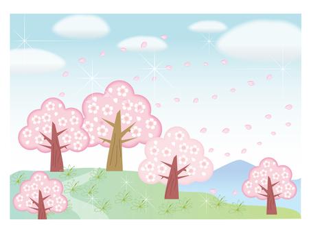 벚꽃 동산 -2