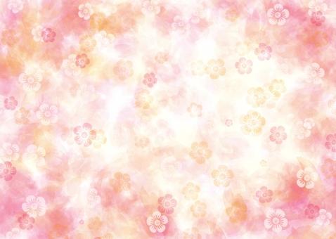 Fluffy petals