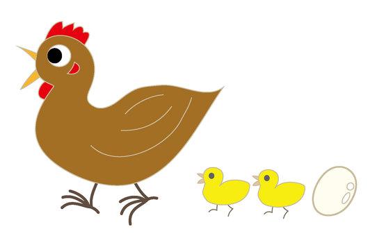 Chicken · chick · egg