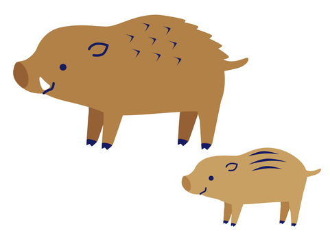 Wild boar and child 2