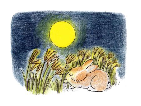 Full moon and rabbit