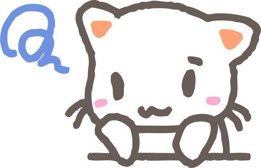 A melancholy cat