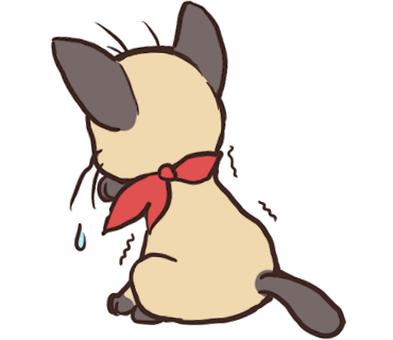 Siamese cat boy _ depressed