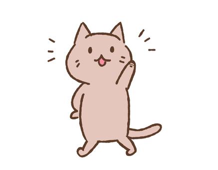 믿음직한 느낌의 고양이