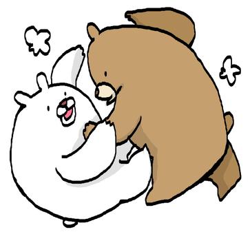 싸움하는 곰