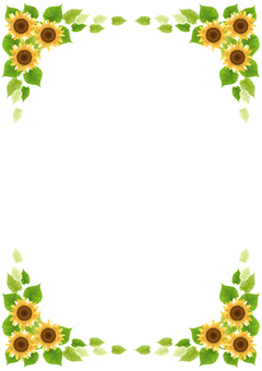 Sunflower 58