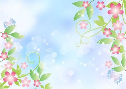 Vines _ cherry blossoms _ sky background
