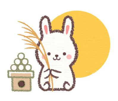 Suki and dumpling rabbit moon