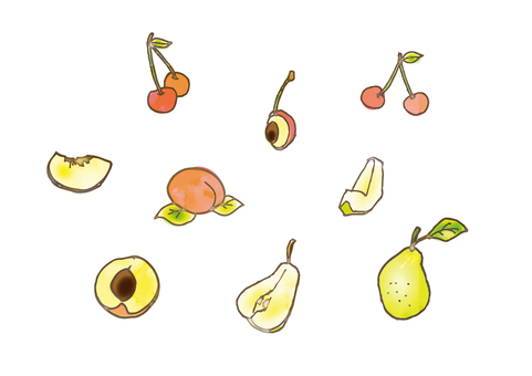 Watercolor style fruit assortment _03