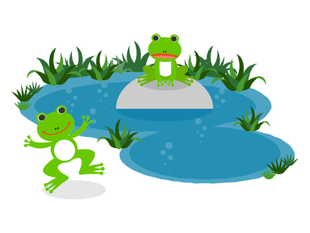 Swamp and frog