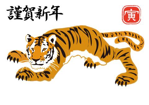 Animals _ Tiger 4