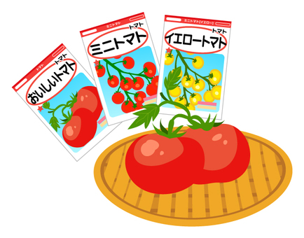 Tomato seeds and tomatoes