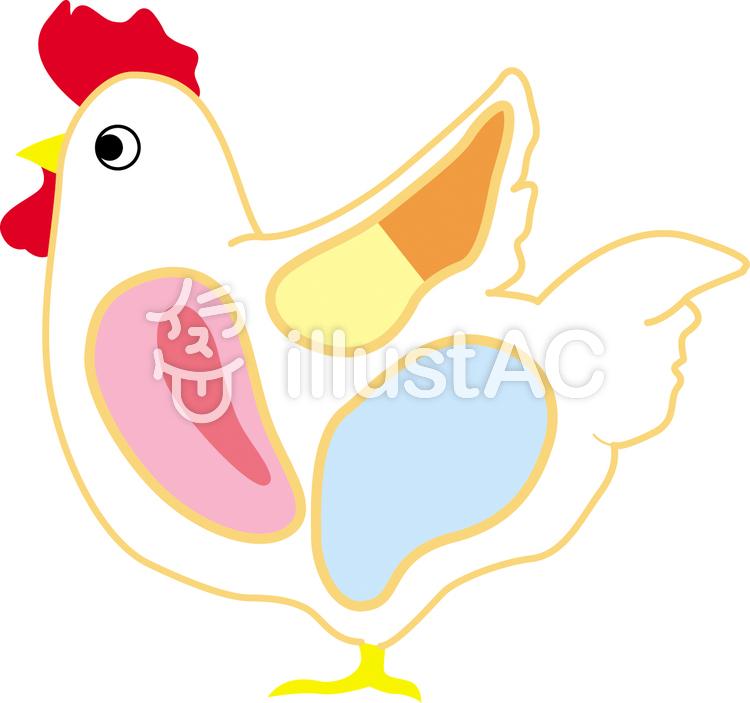 鶏肉の部位イラスト No 737977無料イラストならイラストac