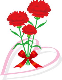 Carnation fashionable