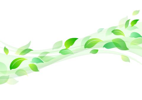 Fresh green material 13