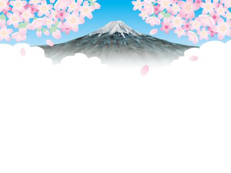 후지산 백 (1) 봄의 벚꽃