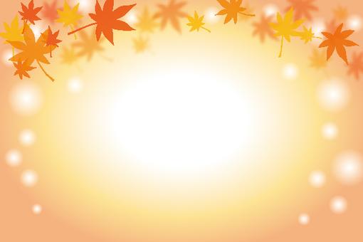 Maple background 001
