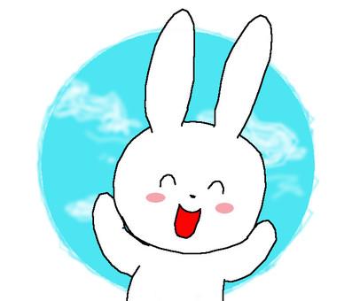 Rabbit Hello