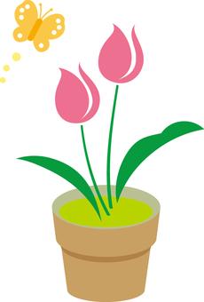 Free tulip cute 05