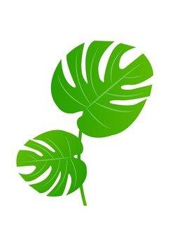 Leaf 22